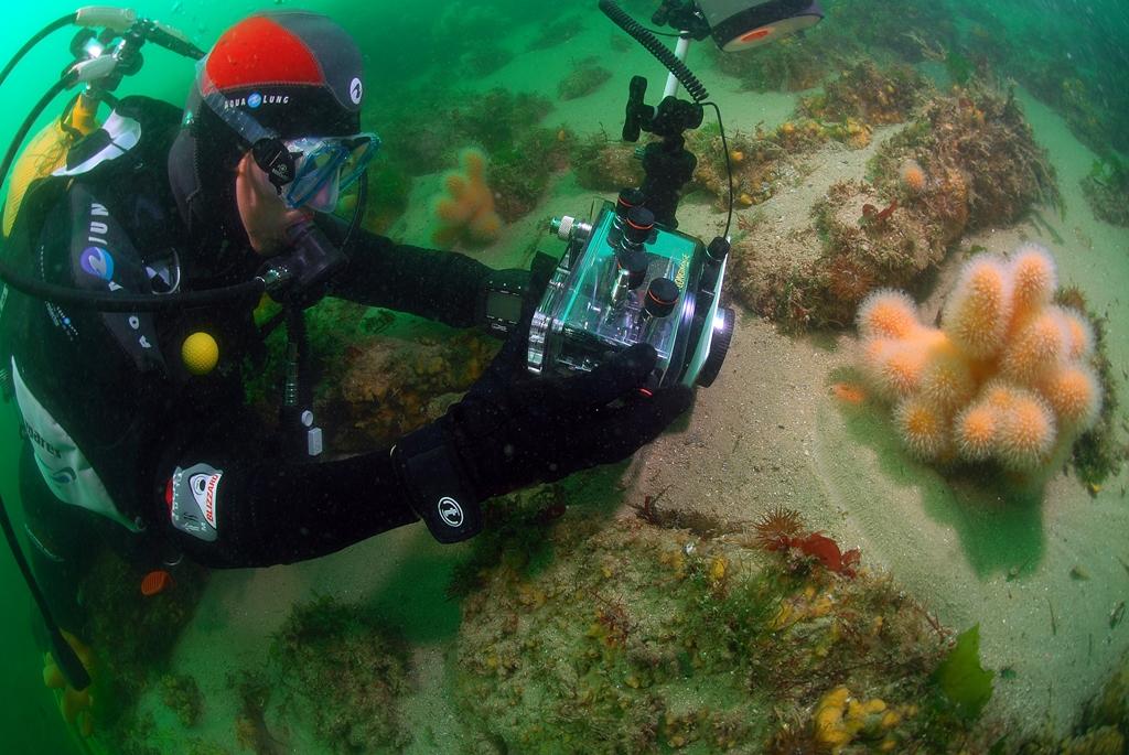 Les précautions envers le milieu sous-marin