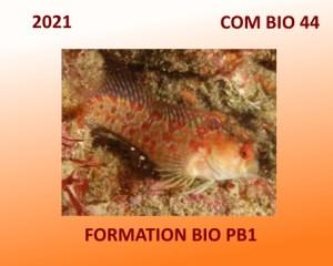 Formation Bio PB1 en 44 pour 2021