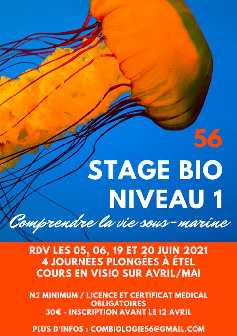 Stage Bio Niveau 1 (complet)