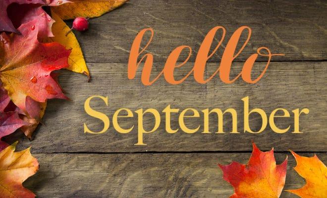 Vuelta a la rutina………Esta es nuestra formación para septiembre!
