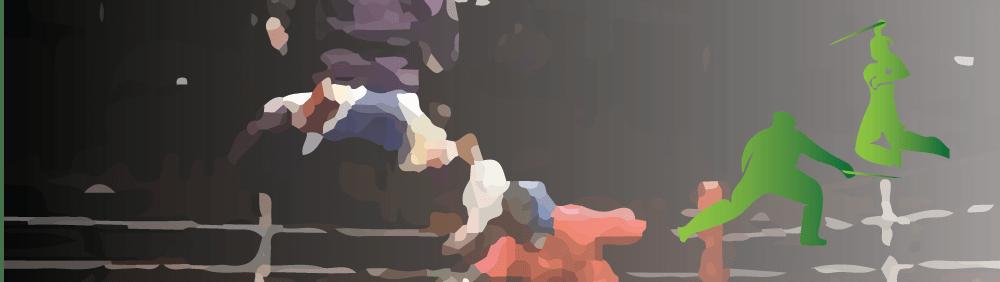 Canne de Combat et Bâton