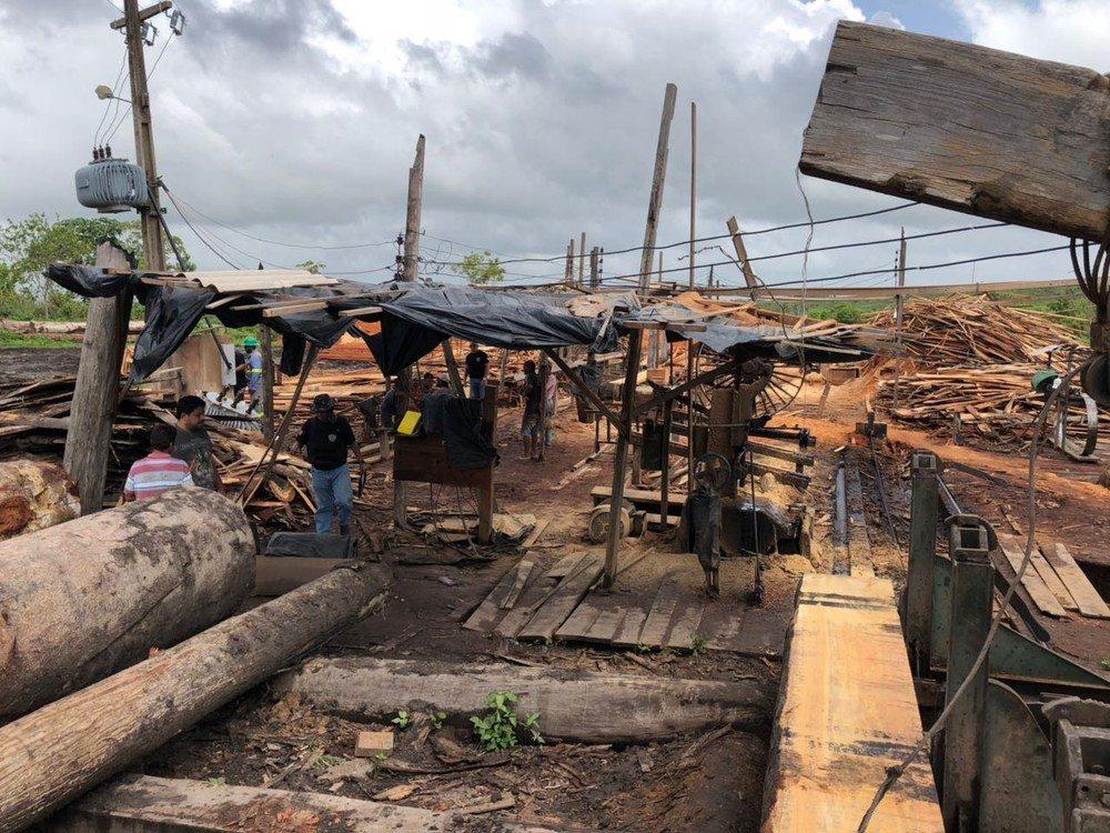 Madeireiras clandestinas são desativadas no município de Zé Doca