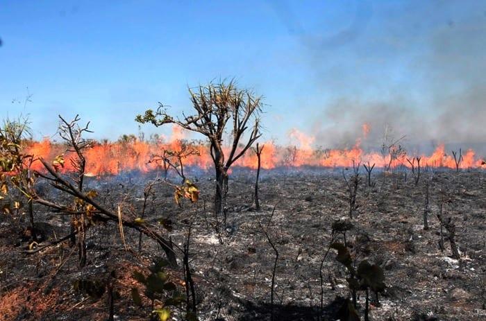 Maranhão já teve 454 focos de incêndio no mês de outubro