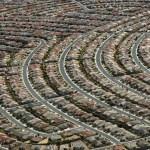 Las Vegas Suburb
