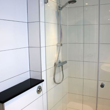 Contemporary White Shower Room