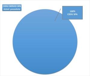 Grafico controllo Cidiu Servizi