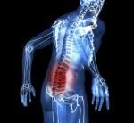 Las lesiones medulares pueden ser reparadas por un gen