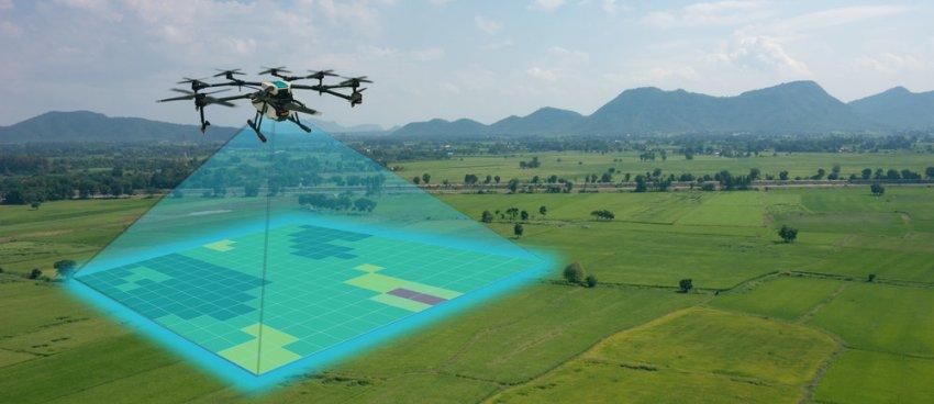 Aplicações e Técnicas de Machine Learning na Agricultura