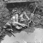 Vida y muerte en las trincheras.