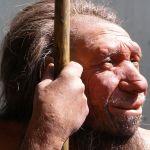 ¿Por que nosotros sobrevivimos y los neandertales no?