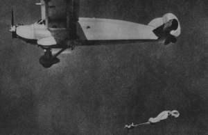 Ovejas paracaidistas