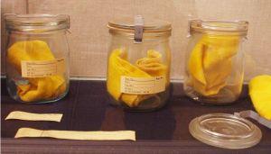 Más braguitas de la colección Stasi.