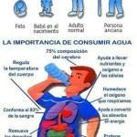Agua_en-cuerpo1