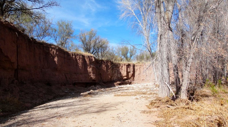 Erosion along Cienega Creek
