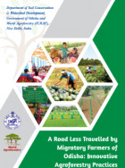 A road less travelled by migratory farmers of Odisha: Innovative agroforestry practice