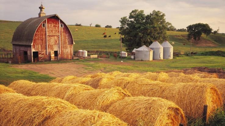 Dünya Çiftçiler Günü çiftçiden eve
