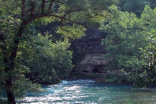 ağaçların arasında nehir