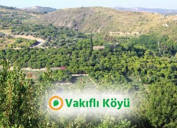 Vakıflı Köyü Kooperatifi