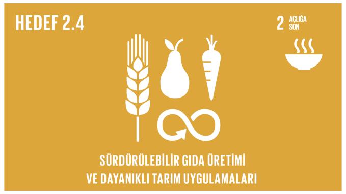 Sürdürülebilir gıda üretimi ve dayanıklı tarım uygulamaları