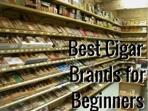 Best Cigar Brands for Beginners