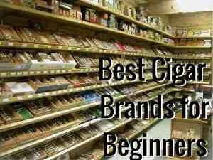 Best Cigar Brands for Beginners