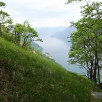 Sentiero degli Ulivi: Onno-Crezzo Uno e Sette