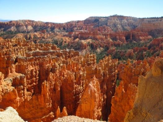Hoodoos in Bryce Canyon, USA