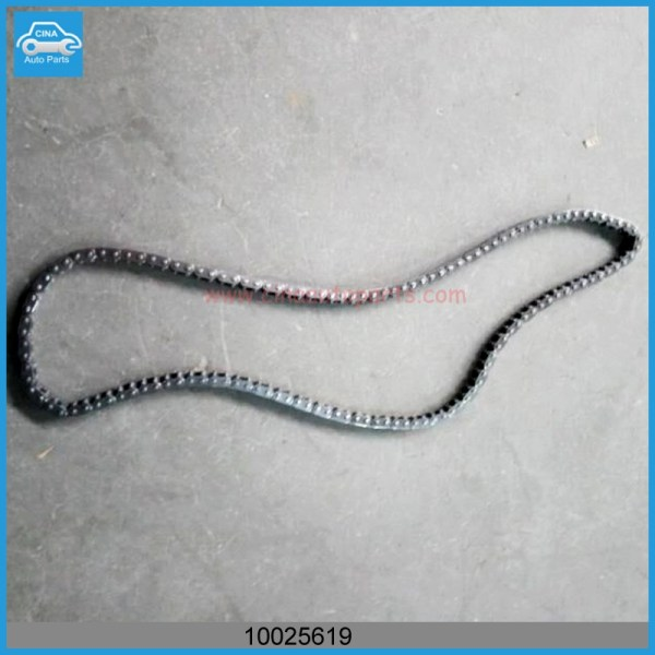 10025619 正时链条 - MG 350 CHAIN-PRIMARY DRIVE OEM 10025619