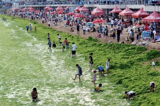 qingdao-beach001