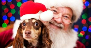 Pet Pictures with Santa @ The Greene | Beavercreek | Ohio | United States