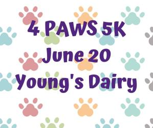 4 Paws 5K 2020 @ Young's Jersey Dairy | Yellow Springs | Ohio | United States