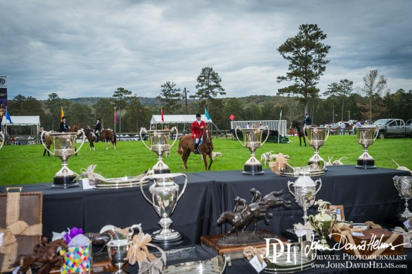 November 7, 2015 - Steeplechase at Callaway Gardens with http://www.OutdoorEvents.com. Pine Mountain, GA. Photo by John David Helms. Full set of images available at http://www.johndavidhelms.com/events #chaserace