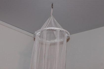 old hoop canopy