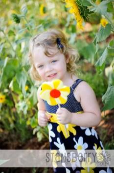 sunflowers-2167