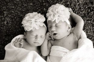 graham twins-2744