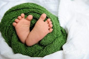 hos newborn-2904