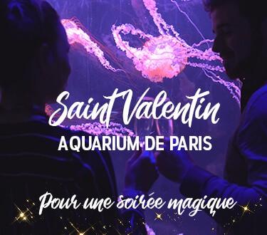 Saint Valentin - Aquarium de Paris