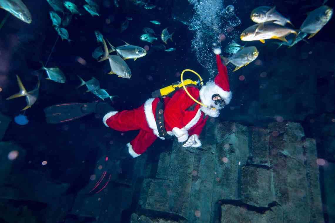 Pere Noël plongeur - Aquarium de Paris