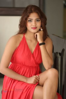 Sravani Nikki (12)