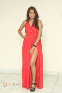 Sravani Nikki (21)