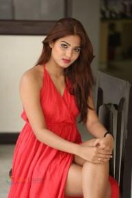 Sravani Nikki (6)