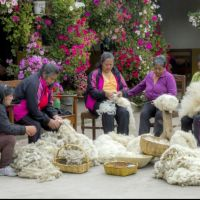 Guaca Guanga, Tejedoras de Pastás