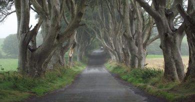 Gata cu joaca: începe Game of Thrones – ultimul sezon