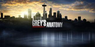 Grey's Anatomy 12 stagione