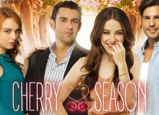 Cherry Season - La stagione del cuore