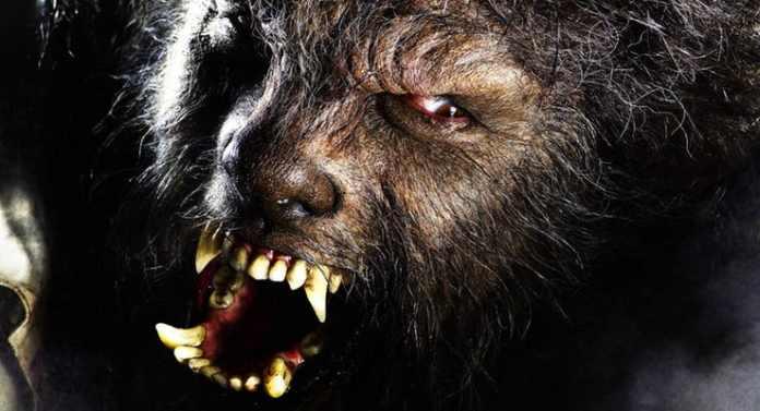 15 film horror che si sono rivelati dei flop - Film senza limiti non aprite quella porta ...