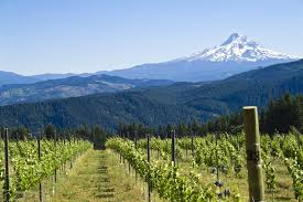 Willamette-Valley-Oregon
