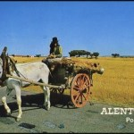 Alentejo-tipical handcart