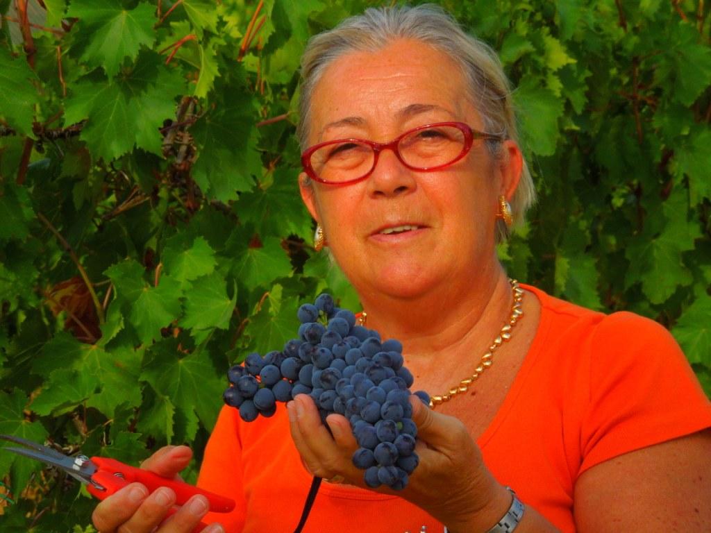 Sangiovese grappolo 2012 Donatella Cinelli Colombini