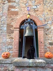 Fattoria del Colle gatto nero Nerone